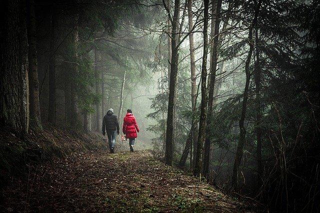Un rendez-vous en forêtt.